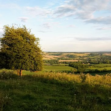 Microadventure report – Ran 50 miles along the South Downs Way